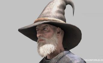 Wizard Hats