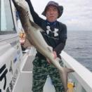 9月16日⇨悪天候中止です。  サメの感想