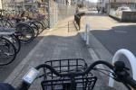 1日利用が50円!交野市駅前の自転車置き場にサッと自転車停めてみた!
