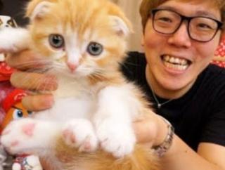 【画像】ヒカキンの飼い猫まるお、いくらなんでもデブ過ぎる
