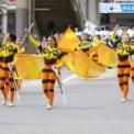 2017年 第44回藤沢市民まつり その11(神奈川県立湘南台高校吹奏楽部)