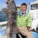 『5月8日 釣果 スーパーライトジギング クロソイの自己記録とヤリイカ面白い一日でした☀』の画像