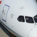 787の小さなアンテナ