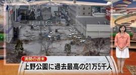 花見のニュースに津波映像を流した件でテレ朝が謝罪 「テスト画像を誤って流したことが原因」