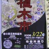 『3月22日土曜日に市役所通りで「植木市」が開催されます』の画像