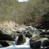 2009年の釣り 4月 15日(水) 大月の真木川、戸沢川、芭蕉月待ノ湯のサムネイル