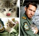 【画像】イギリスで子猫が483キロの大冒険