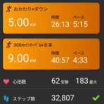 アルスのマラソントレーニング日記