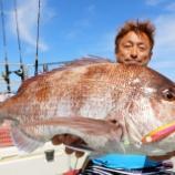 『6月29日更新③ 釣的動画 仙台湾の浅場根回りマダイ』の画像