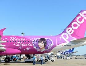 篠田麻里子で大々的に宣伝してた航空会社が大ピンチwwwww