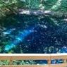 神秘的な青い池と、旅先で見つけた、大当たりな食堂。〜青森 静観荘網元〜