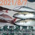 2021/8/7 鯛ラバ+ジギング