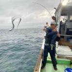 てっちゃんの釣り日記