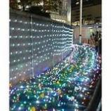 『光の花壇』の画像
