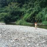 『都幾川 学校橋河原で川遊びしてきたよ』の画像