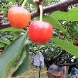『(番外編)本日は福島県の農家さんを訪問しました』の画像