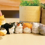 「香箱座り」をしたネコが小箱になってガチャに登場!「香箱座りの猫の小箱」