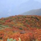 『速報☆日本百名山 巻機山と日本二百名山 戸隠山に行ってきました。』の画像