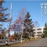 『白樺の映える学舎』の画像