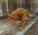 六ケ所村で土佐犬脱走 体長130センチ、体重80キロ 県警ヘリなど捜索