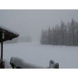 『フワフワの新雪が積もりパウダー日和です。』の画像