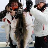 『1月4日 釣果 スロージギング 2015年 初釣行!』の画像