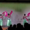 東京外国語大学第94回外語祭2016 その13(ベトナム舞踊同好会)