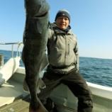 『3月 7日 釣果 スーパーライトジギング SLJ』の画像