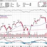 『米中貿易戦争激化で世界同時株安へ 唯一好調なセクターとは』の画像