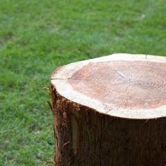 木目のプレミアムウォールデコシート!北欧ナチュラルVSオールドウッド
