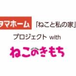 『【ねこと私の家】タマホームがコンセプト型企画商品発表!販売開始も決定! #61』の画像