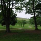 『都立狭山公園散策Ⅱ;東大和市』の画像