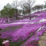 『5月の色⑩(北海道東へ②)』の画像