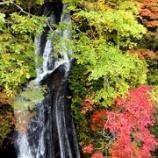 『恵庭渓谷付近の紅葉~』の画像