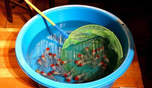 立体的な金魚を描く深堀隆介さんの作品に海外感動