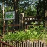 『7月のヤマユリⅡ;東大和市狭山緑地』の画像