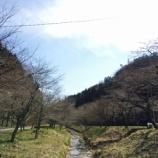 『4月上旬~中旬に「モネの池」観光される方は必見!「寺尾ヶ原千本桜」とセットで贅沢観光しなきゃ損ですよ。(岐阜県関市)』の画像