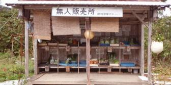 無人販売所で野菜を買おうと料金箱にお金を入れようとしたら彼が「どうせこんなとこに出てる野菜なんかタダ同然だろ?」