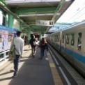 日本大学生物資源学部藤桜祭2012 その1(開幕)