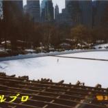 『ニューヨーク旅行記4 雪景色のセントラルパークを早朝散歩』の画像