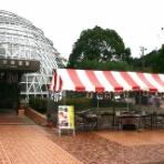 クラフトNo.1イベント3Dカード教室【大手公園・公共施設/団体編】