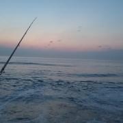 8月入ってからのサーフ釣行