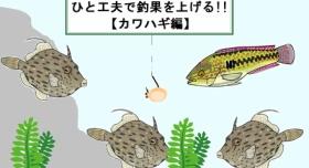 『【工夫仕掛け】釣れないカワハギの釣果を工夫で劇的に上げる?(ポイント~餌)』の画像