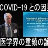 """『2020.4.27 小早川 智氏特集 - 5GとCOVID-19の""""因果関係メカニズム""""/👉アメリカで2019年10月から5Gがスタート⏩️新型インフルエンザ大流行⏩️新型コロナウイルス大流行、他6件』の画像"""