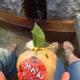 『みかんご飯』の画像
