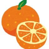 『オレンジレンジ「上海ハーニーとーwwww浜辺社ー交ーダンスwwww」』の画像
