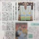 『菓子処なかじまがプレミアムカステラ「四千年の奇蹟」の販売開始!』の画像
