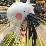 『【うさまると一緒に写真撮影!】うさまるがロフトにやってくる!【ロフト名古屋にうさまる先生登場】』の画像