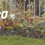 『【レビュー】NURO光回線を1年間使ってみたのでレポート、低pingが安定していてゲーマーへおすすめ』の画像