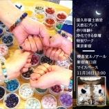 『11月東京新宿での屋久杉富士溶岩ブレス作り体験特別ワークショップ決定!』の画像